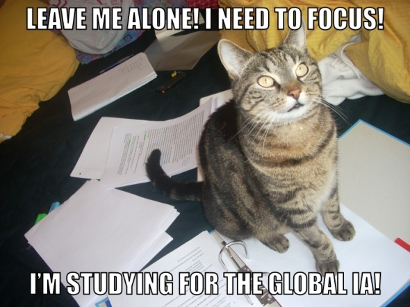 IA STUDY CAT